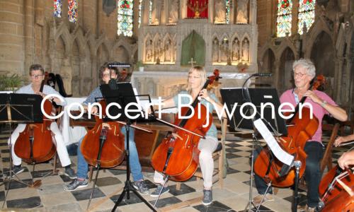 Concert Bijwonen